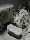 Snow_20110214_016_