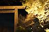 Yasukuni_20120101_001m