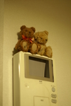 MIKA_bear_20050825